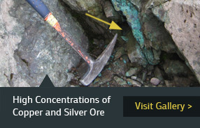 High Concentrations of Copper and Silver Ore